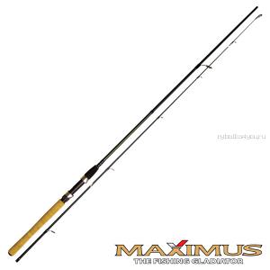 Спиннинг Maximus Archer 2,4м/15-40гр MSA24MH